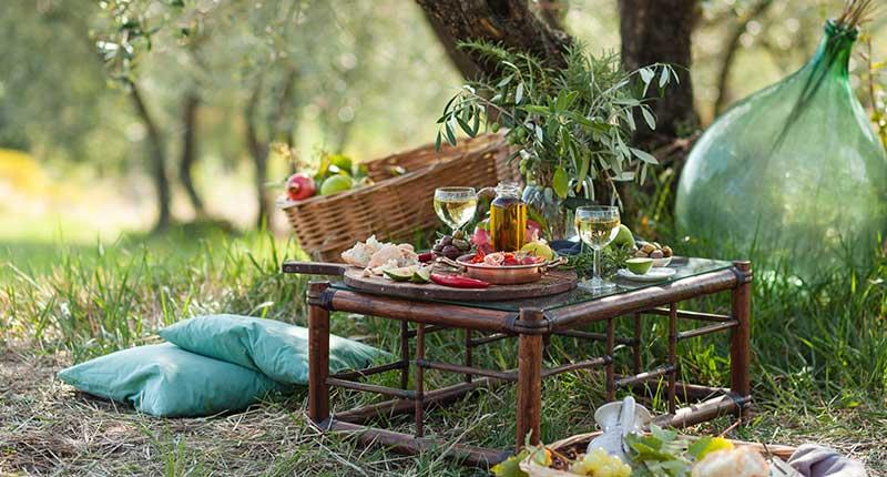 olijven-plukken-griekenland-lunch-eliza-was-here