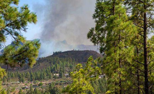 Bosbranden op Gran Canaria