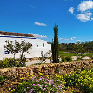 Quinta Sao Pedro
