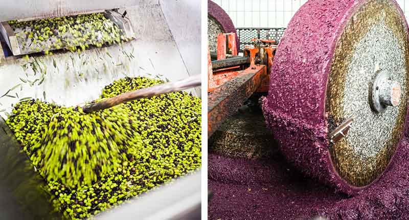 olijfolie-proeven-puglia-productie-eliza-was-here