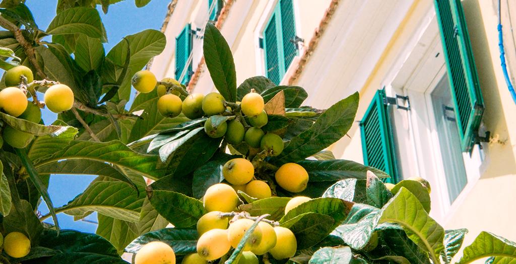 De verrukkelijke smaken van Corfu