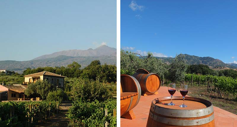 boerderijvakantie-agriturismo-tenuta-madonnina-eliza-was-here