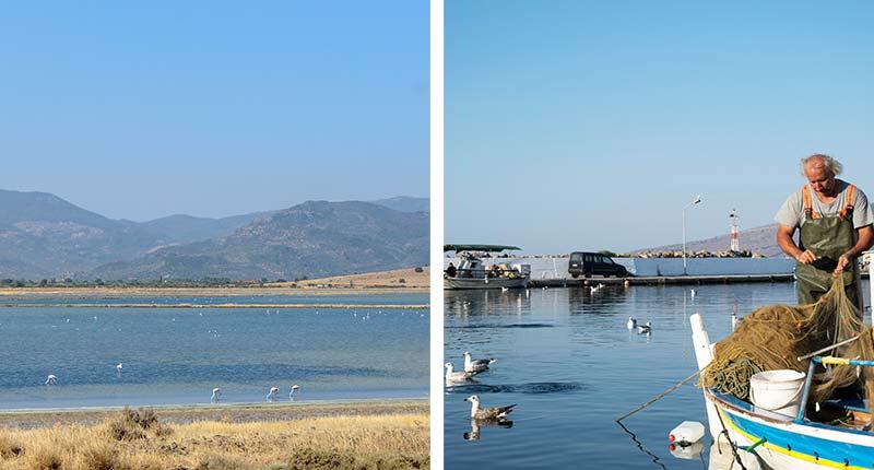 favoriete-uitstapjes-Lesbos-vissersdorpje-kalloni-eliza-was-here