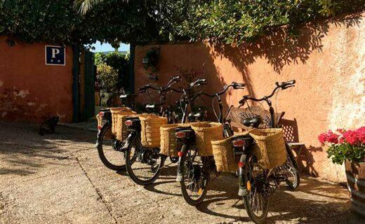 vakantiebestemmingen-fietsers-eliza-was-here-belgie