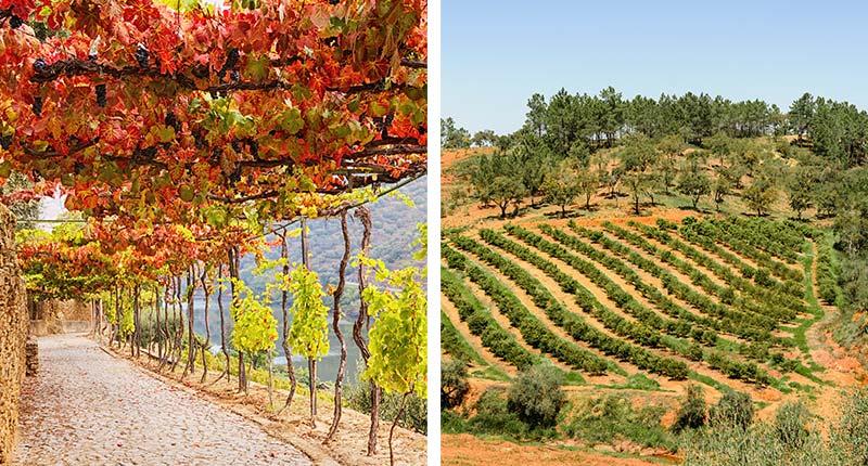 Costa Verde in Noord-Portugal: vakantiebestemmingen voor 2020